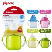 Bình tập uống Pigeon- Màu