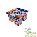 Sữa chua trái cây campina fruttis 5%